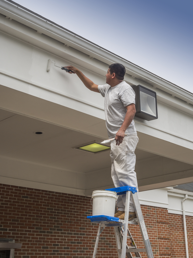 Hire a Local Painter for Professional Results